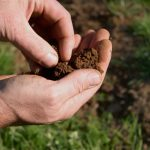 Restoring Fertile Productive Soils Forum and Field Day